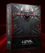 Hidden Path Audio Tranzform
