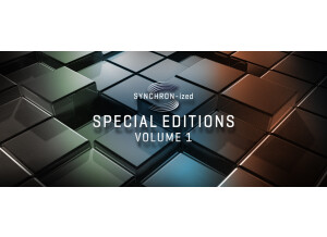 VSL (Vienna Symphonic Library) Synchronized Special Edition Vol.1 - Essential Orchestra