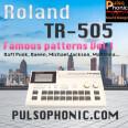 Les meilleurs grooves de la pop dans votre TR-505