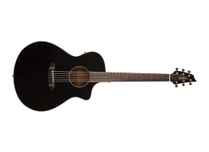 Breedlove Discovery Concert Satin CE Limited Edition