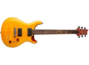 PRS SE Paul's Guitar