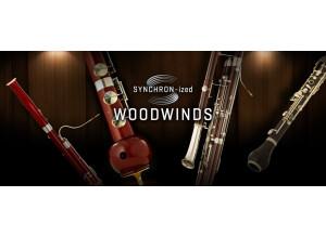 VSL (Vienna Symphonic Library) Synchron-ized Woodwinds