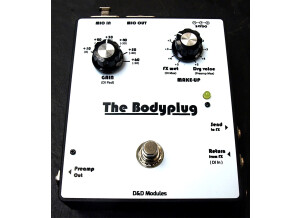 D&D Modules The Bodyplug