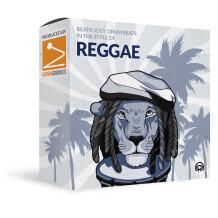 Singular Sound Reggae - Beats in the Style Of
