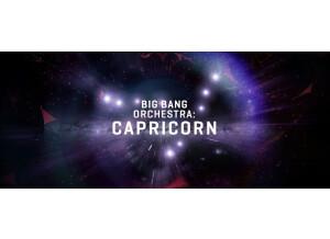 VSL (Vienna Symphonic Library) Big Bang Orchestra : Capricorn