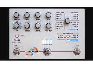 Hologram Electronics Microcosm granular