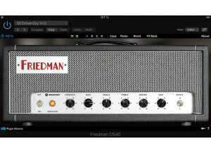 Brainworx Friedman DS-40