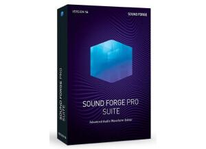 Magix Sound Forge Pro 14 Suite