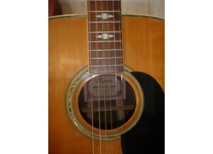 Ryan Guitars F45