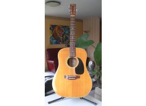 Maya (guitar) F385