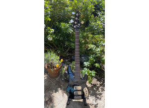 Sandberg (Bass) VM2 - 5 30th Anniversary