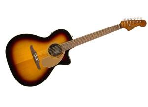 Fender Newporter Player [2020-Current]