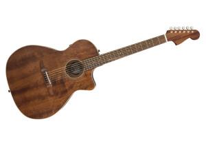 Fender Newporter Special [2020-Current]