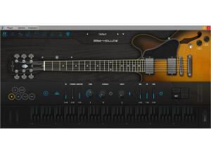 Ample Sound Ample Guitar Semi-Hollow III