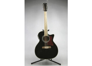 Tennessee Guitars T-314/12