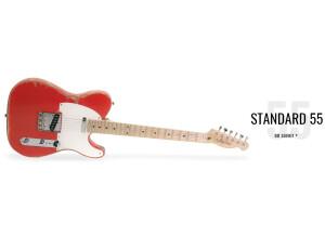 Little Wings Guitars Littlecaster standard 55'