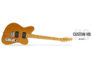 Little Wings Guitars Offset Custom HB