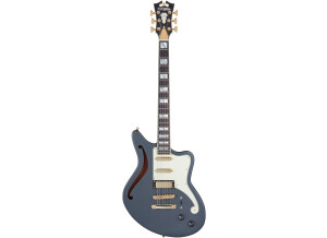 D'angelico Deluxe Bedford SH LE