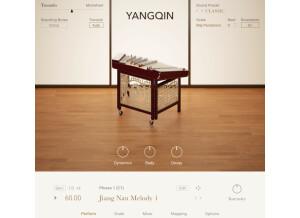 Native Instruments Yangqin