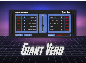 Digital Systemic Emulations Giant Verb