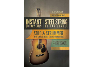 8dio Instant Steel String Guitar Bundle