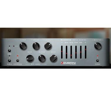 Nembrini Audio Blackrice Beta Gamma Bass Amplifier