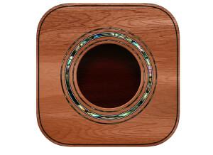 Blue Mangoo iFretless Guitar App