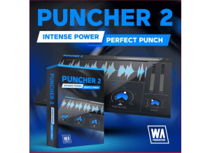 W.A. Production Puncher 2