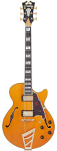 D'angelico Excel SS [2021-Current]