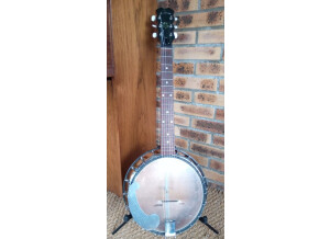 Eko Banjo 6 cordes
