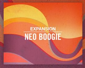 Native Instruments Neo Boogie