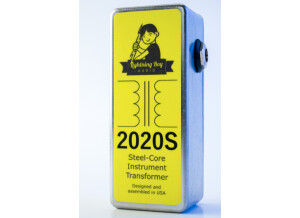 Lightning Boy Audio 2020S