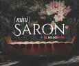 Soundiron présente Mini Saron