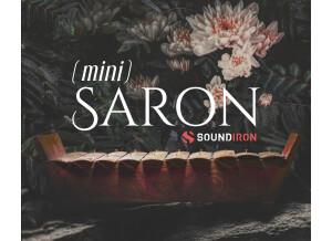 Soundiron Mini Saron