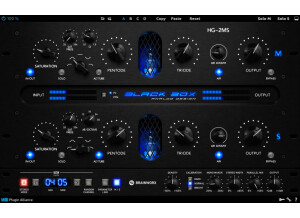 Brainworx Black Box HG-2MS