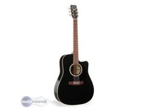 Elypse Guitars CW