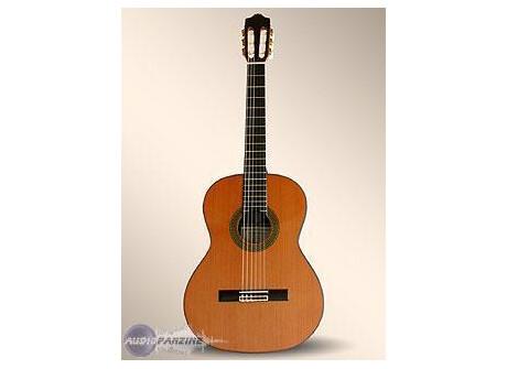 Alhambra Guitars 9P