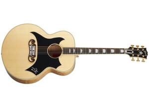 Gibson Tom Petty SJ-200 Wildflower
