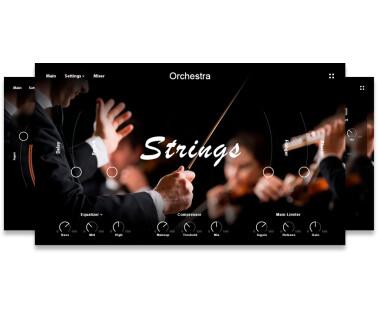 Muze Strings Ensemble