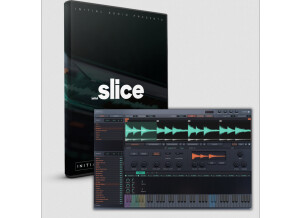 Initial Audio Initial Slice