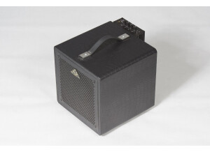 Guitar Sound Systems GSS 08GA70 Acoustic Dog