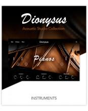 Muze Dionysus Acoustic Piano