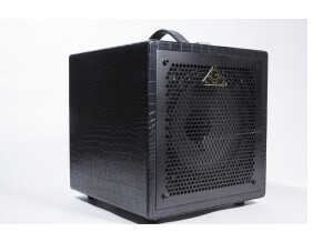 Guitar Sound Systems GSS 08GC15