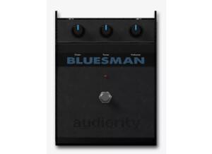Audiority The Bluesman