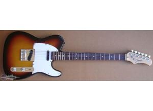 Johnson Guitars Del Sol JT-800