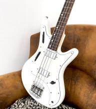 Nordstrand Guitars Acinonyx