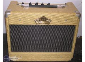 Washburn VGA 15