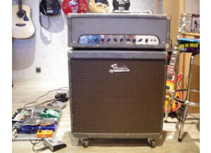 Peavey Classic 50 115 (Discontinued)