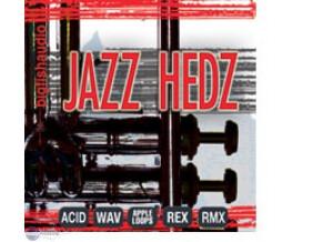 Big Fish Audio Jazz Hedz