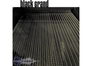 Sampletekk the Black Grand